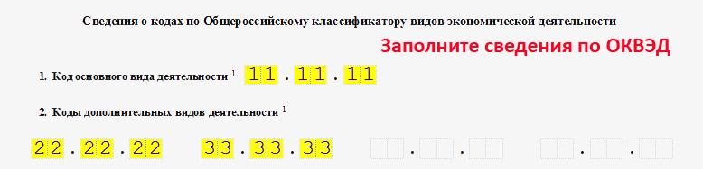 Форма Р11001. Образец заполнения