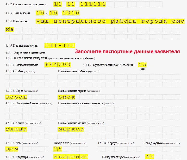 Заявление по форме р21001 - 53
