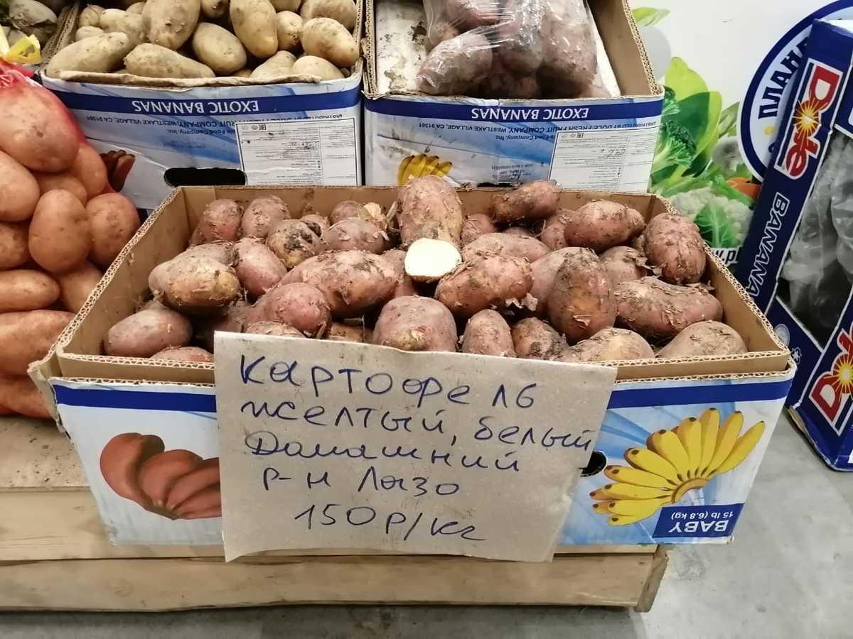 Профессор Рамазанов: «С ноября в России резко начнет дорожать картофель»