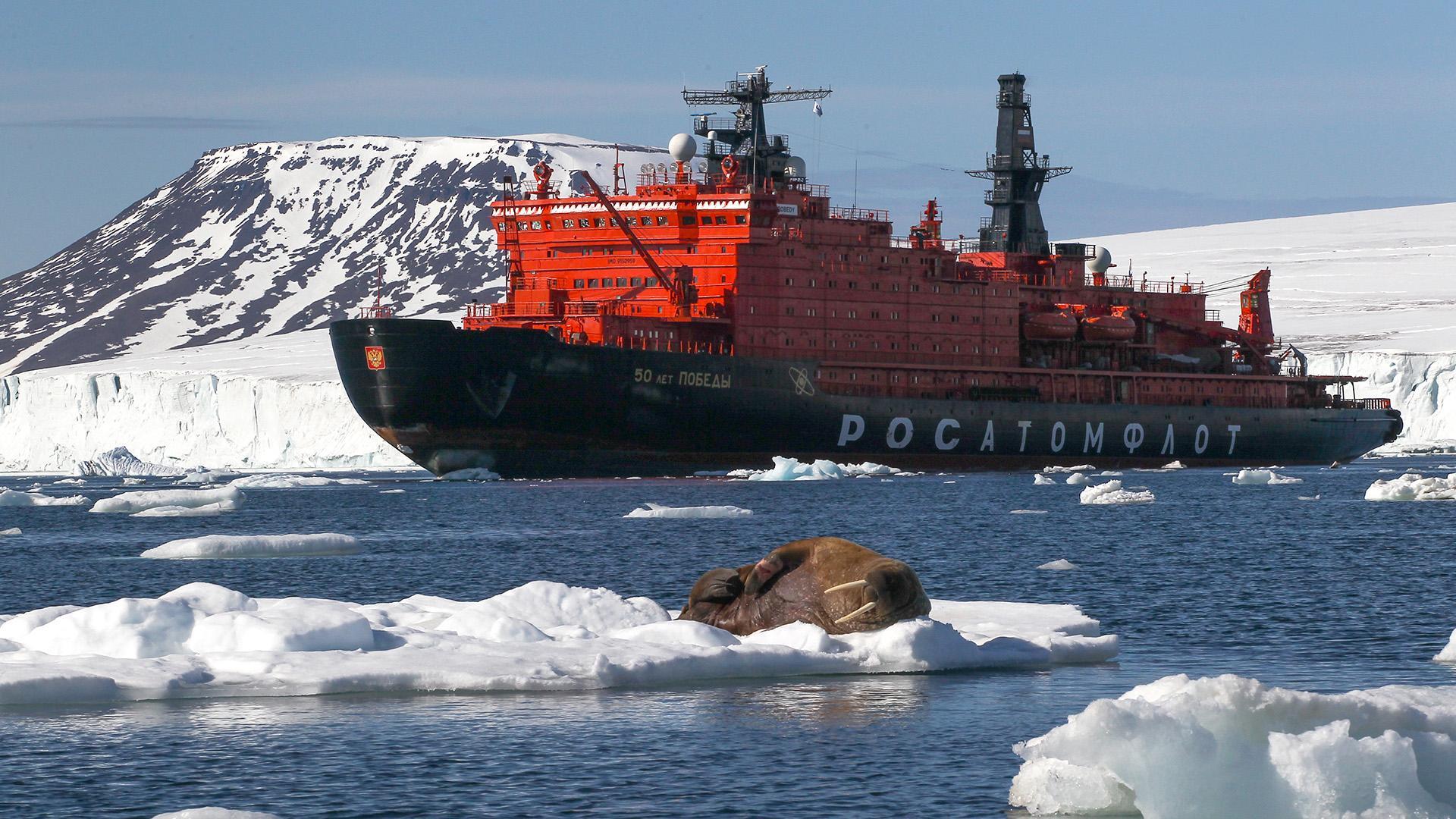К 2035 году в Арктике создадут 200 тысяч рабочих мест - pnp.ru